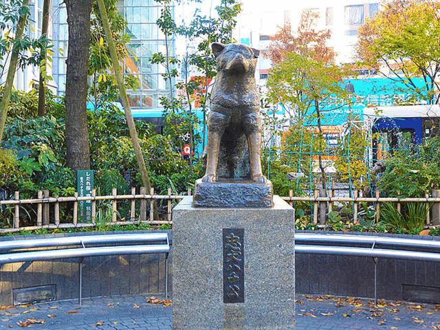 渋谷駅 ハチ公前